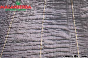 Weed fabric sample