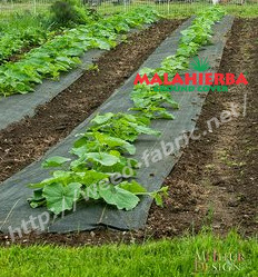 ground cover fabric used in plants in garden