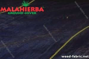 Anti-weed fabric installed in a field